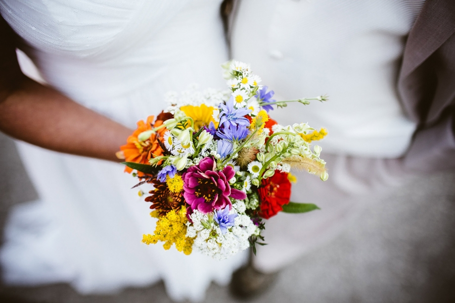 Flowers in Red River Gorge, Kentucky - My Tiny Wedding in the Red ...