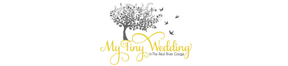 My Tiny Wedding in the Red River Gorge logo
